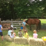 The Best Easter Farm Activities