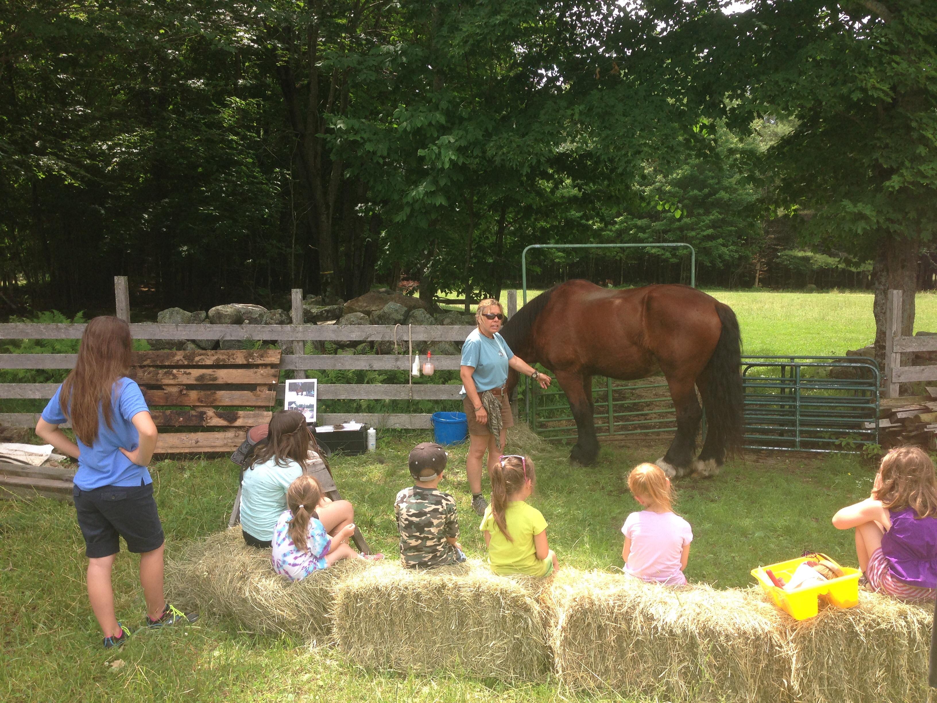 family activity farm
